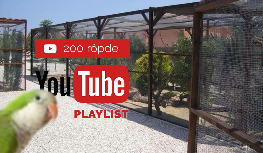 200 röpde youtube playlist